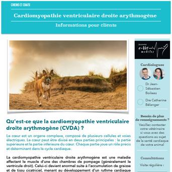 Cardiomyopathie ventriculaire droite arythmogène