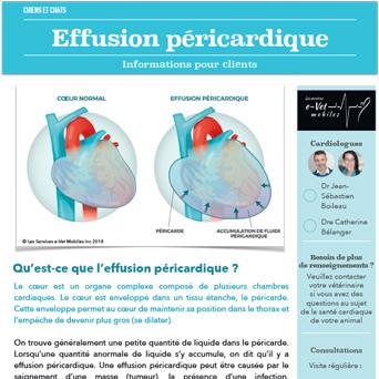 Effusion péricardique