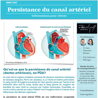 Persistance du canal artériel