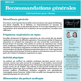 Recommendations générales